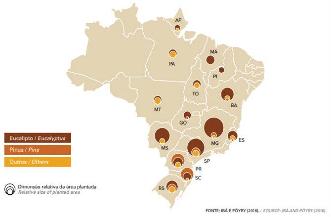 ÁREAS DE ARVORES PLANTADAS NO BRASIL POR ESTADO E POR GENERO, 2016.