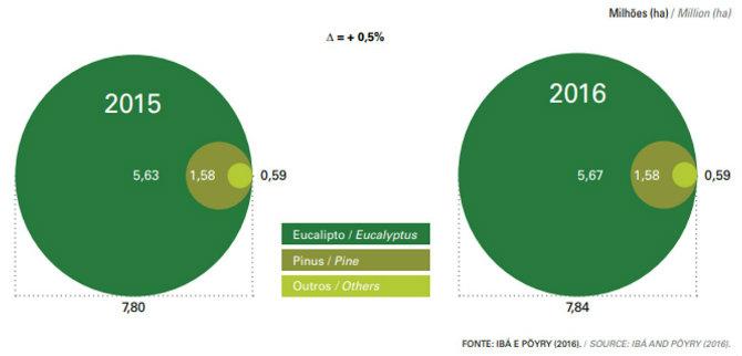 ÁREAS DE ÁRVORES PLANTADAS