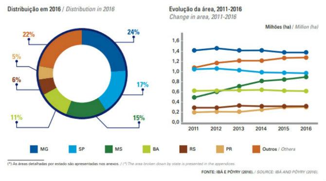 DISTRIBUIÇÃO E EVOLUÇÃO DA ÁREA COM PLANTIOS DE EUCALIPTO, POR ESTADO.